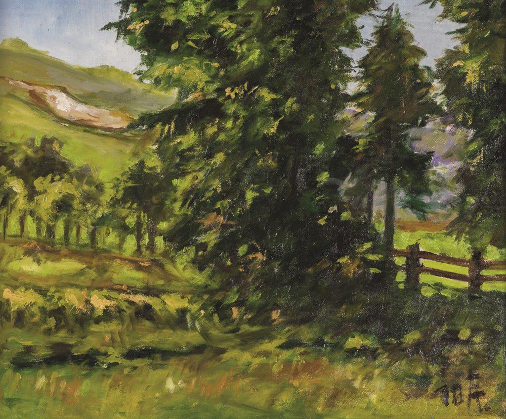Somogyi dombvidék