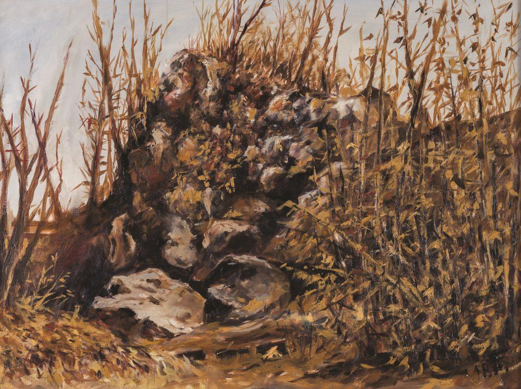 Bakonyi Sámán szikla
