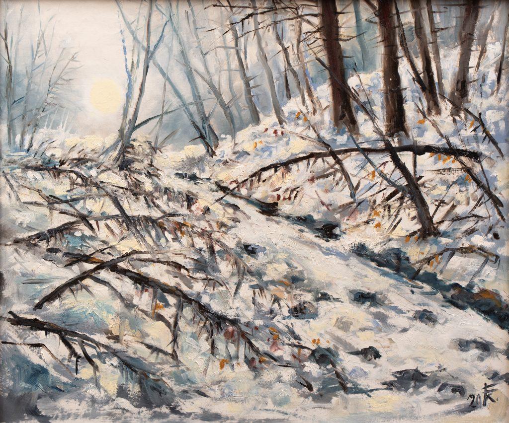 Téli reggel az erdőn (Zselic)